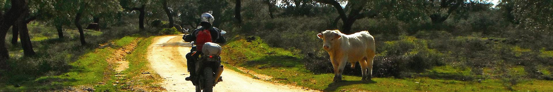 motorradreise-portugal-enduro-offroad-slider-01