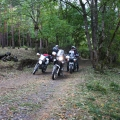 armenia travel enduro forest