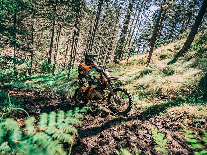 5-Day Enduro Tour in Serbia
